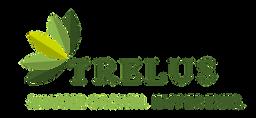 Trelus-Logo-no-background-1.png