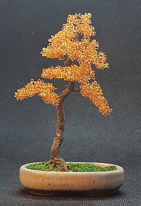 Warm Gold Copper with coated trunk