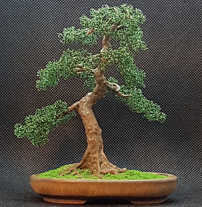 Green Copper 14cm