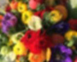 Schnittblumen Frühling