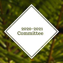 COMMITTEE 20-21.png