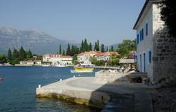 Rose - Lustica Peninsula