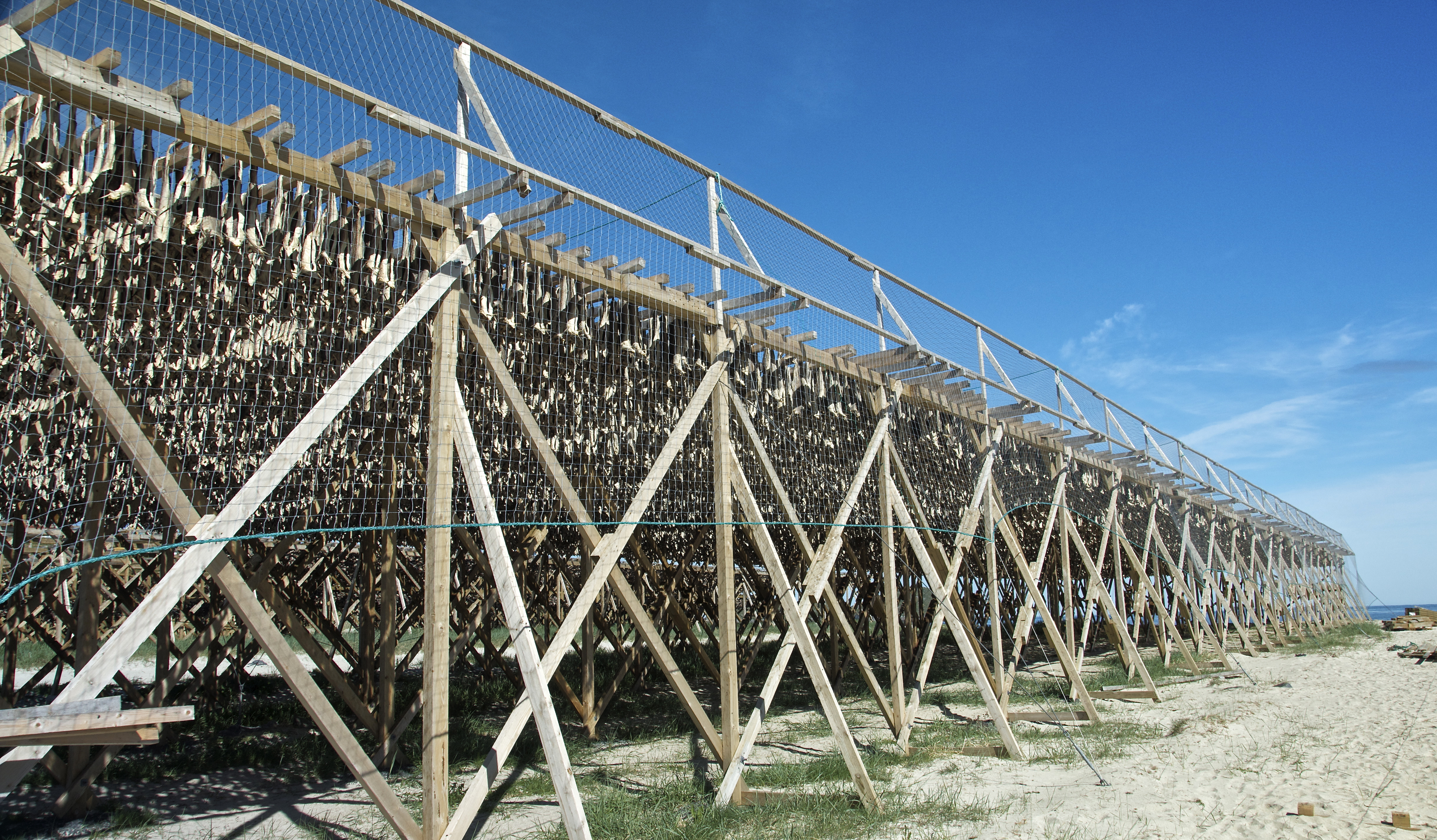 Fish drying - Hovden, Norway