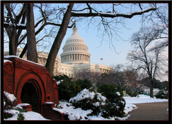 Washington DC Capitol 2006