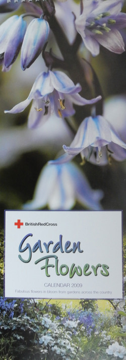 Front Cover of Calendar 2009