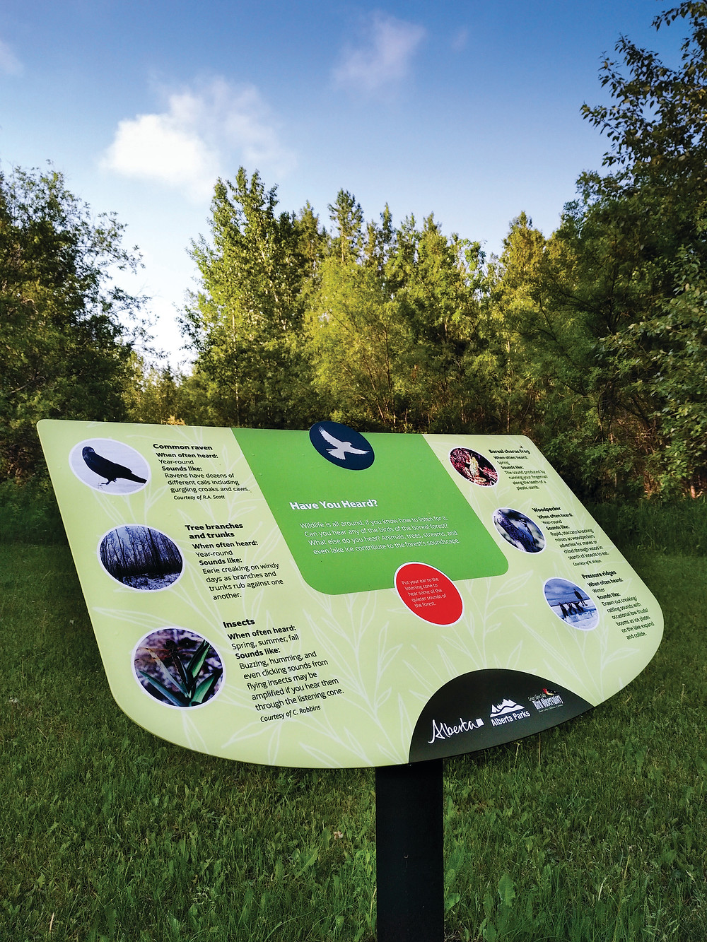 green powder-coated graphic interpretive panel with photos of birds