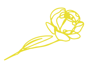 FlowerElement-yellow.png