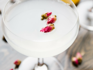 Five Fabulous Cocktails from The Cocktail Architect