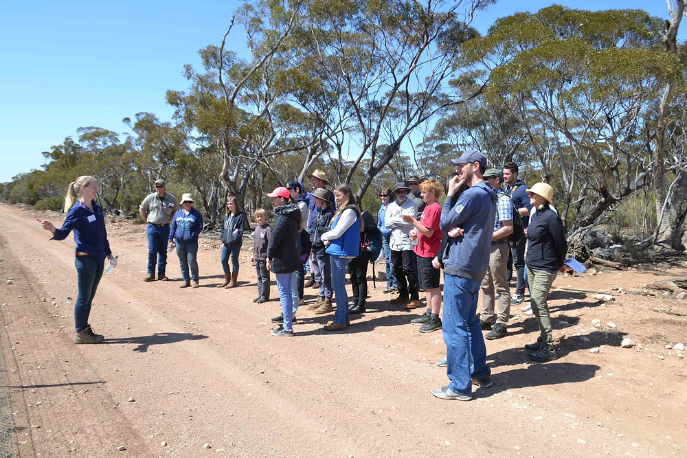 © Melissa Elderfield/AWC - Interpretations Intern Emily Hegarty guides visitors on an educational Mallee walk. Competition is fierce for AWC's Interpretation Internship at Yookamurra, with an average of more than 80 strong applications for each of the three-month opportunities.