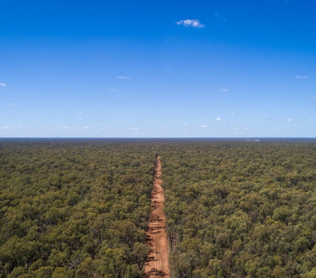 Construction underway on massive feral-free area in the Pilliga