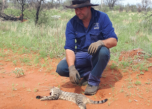 © David Fraser/AWC - AWC Animal Control Officer Murray Schofield with the last cat that was inside the feral predator-proof fence.