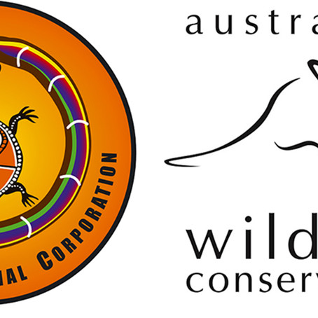 Threatened mammals confirmed in remote Kimberley refuge
