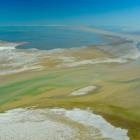 Floodwaters bring new life to Lake Eyre and desert river systems at Kalamurina