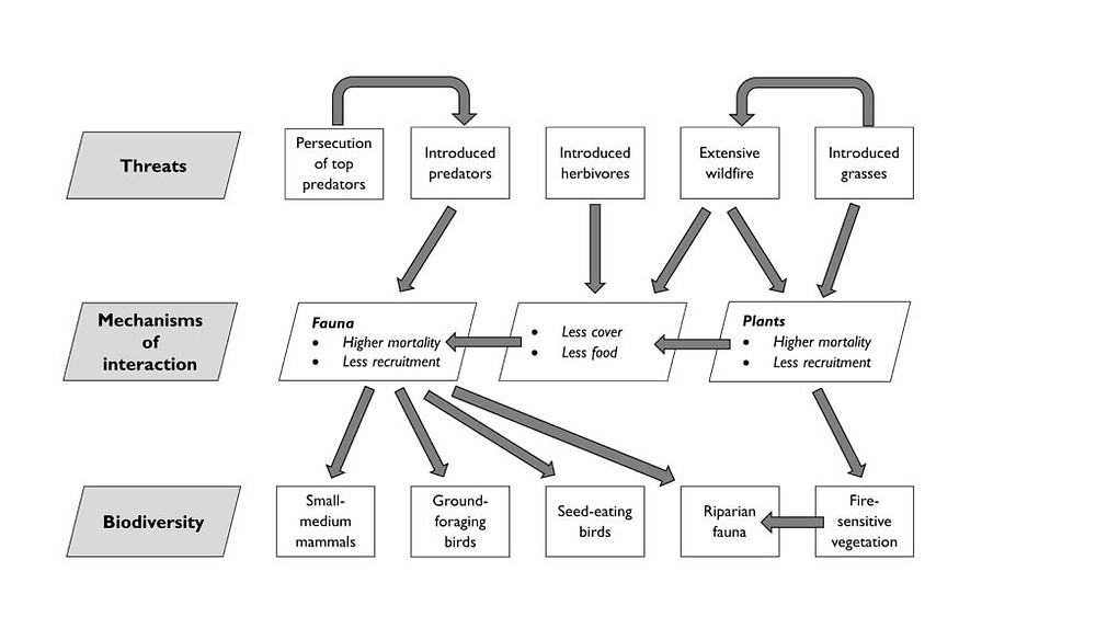 Figure. 1. Conceptual model of interactions between conservation assets (species, guilds, ecosystems) and threats in Australia's northern savannas. Source: Kanowski et al. (2018).
