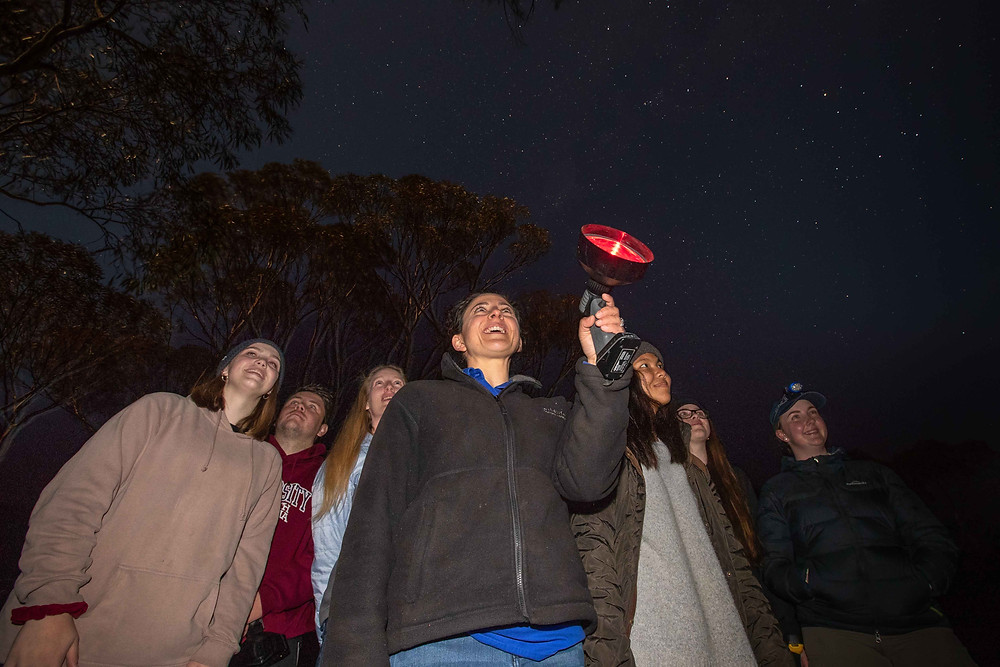 © Brad Leue/AWC - Students visiting Yookamurra enjoy a spotlighting survey. Each year at Yookamurra, AWC ecologists undertake over 2,000 live trap nights, 400 spotlight surveys, and 300 camera trap nights, as well as bird surveys and vegetation surveys.