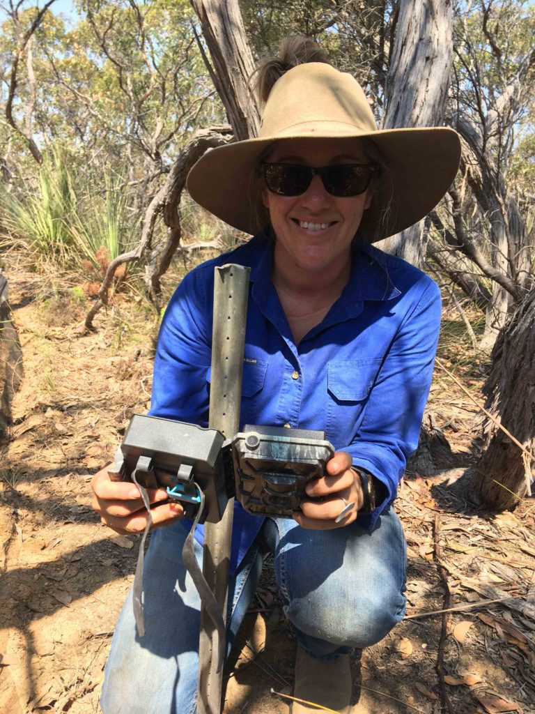 Heidi Groffen of Kangaroo Island Land for Wildlife installs a camera trap to detect and monitor the KI Dunnart and other threatened species. © Kangaroo Island Land For Wildlife