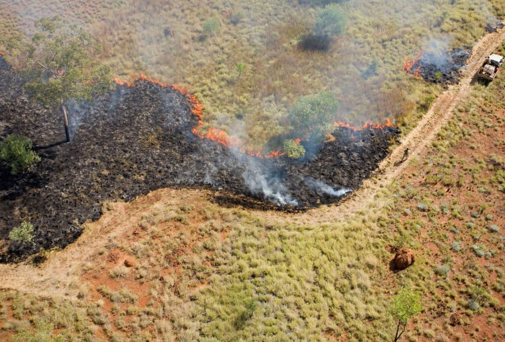 © Nick Rains/AWC - Cool and patchy early season burns like this minimise vast and destructive wildfiresin the Kimberley.