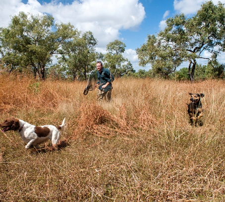 Ground-breaking feral cat research extended across northern Australia