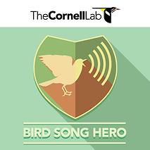 Bird_Song_Hero_logo.png