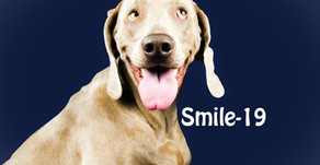 The Smile-19 Movement