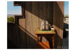 Tom Johnson + Gucci