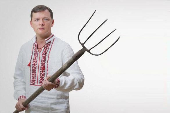 Радикальный фантазер Lifenews 21/02/2015