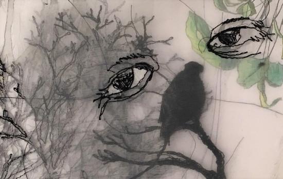 trees have eyes.jpg