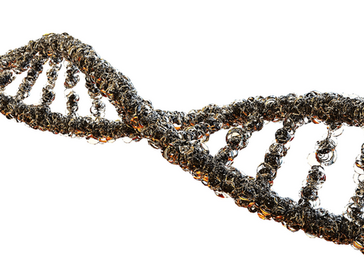 Epigenetics How It Can Impact Lives and The Need to Discover Its Impact on Us