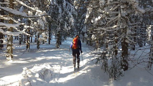 backcountry-skiiing-2004247_1920_web.jpg