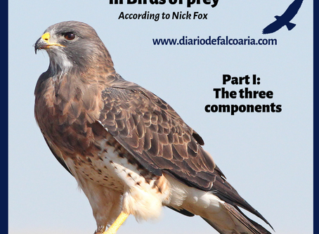 Components of behavior in Birds of Prey I