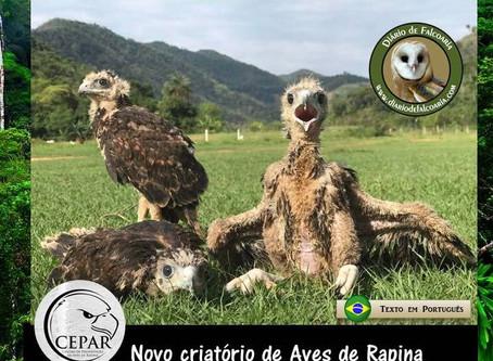 CEPAR - Novo criatório de aves de rapina