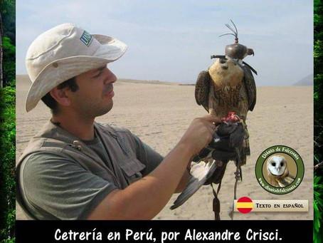 La cetrería Peruana