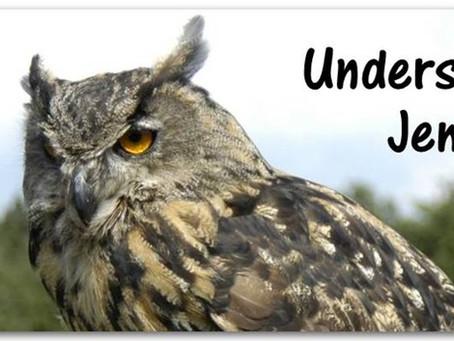Understanding owls - resumo