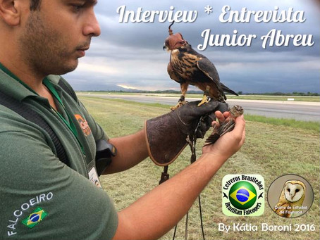 Entrevista Junior Abreu