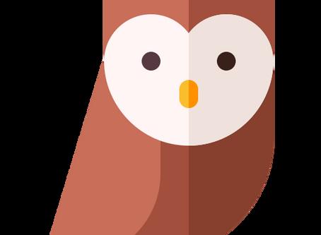 Ajudando as corujas * Helping owls * Ayudando los búhos