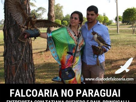 Falcoaria no Paraguai