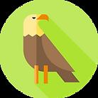 eagle (1).png