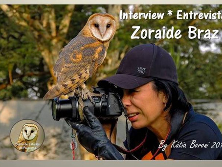 Entrevista Zoraide Braz