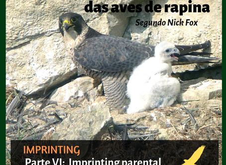 Imprint parental nas aves de rapina