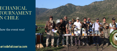 1st National Tournament of mechanical lure for low-flying birds in Chile