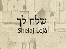 SHELAJ-LEJÁ
