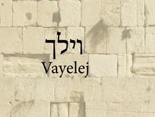 Vayelej