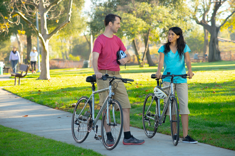 bikes1211.jpg