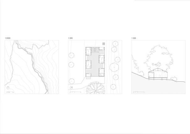 P06-LZW-Plan-Section.jpg