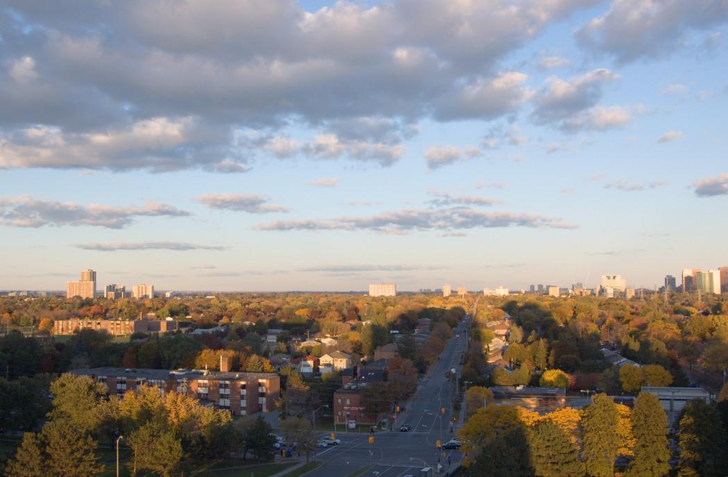 North York Views