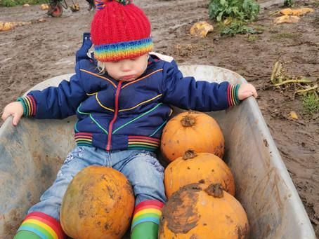 Ecologico Experiences: A Less Horrifying Halloween!