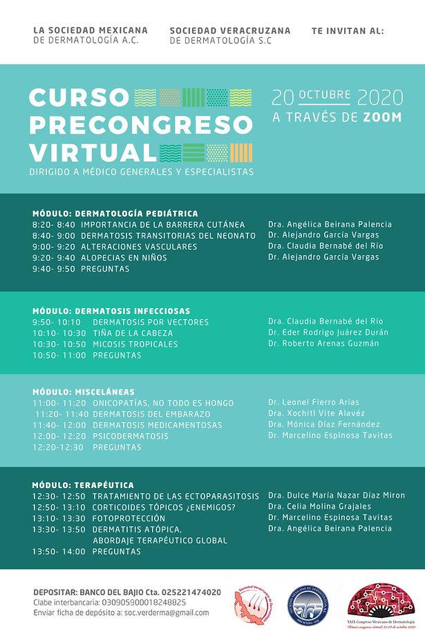 CURSOPRECONGRESO-PROGRAMA.JPG