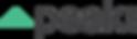 Peak DSP black logo.png