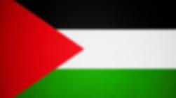 E4_flag.png