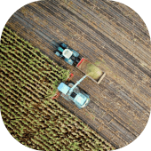 img_agriculture.png